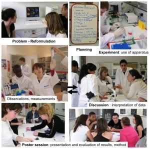 Mini-lab organization steps